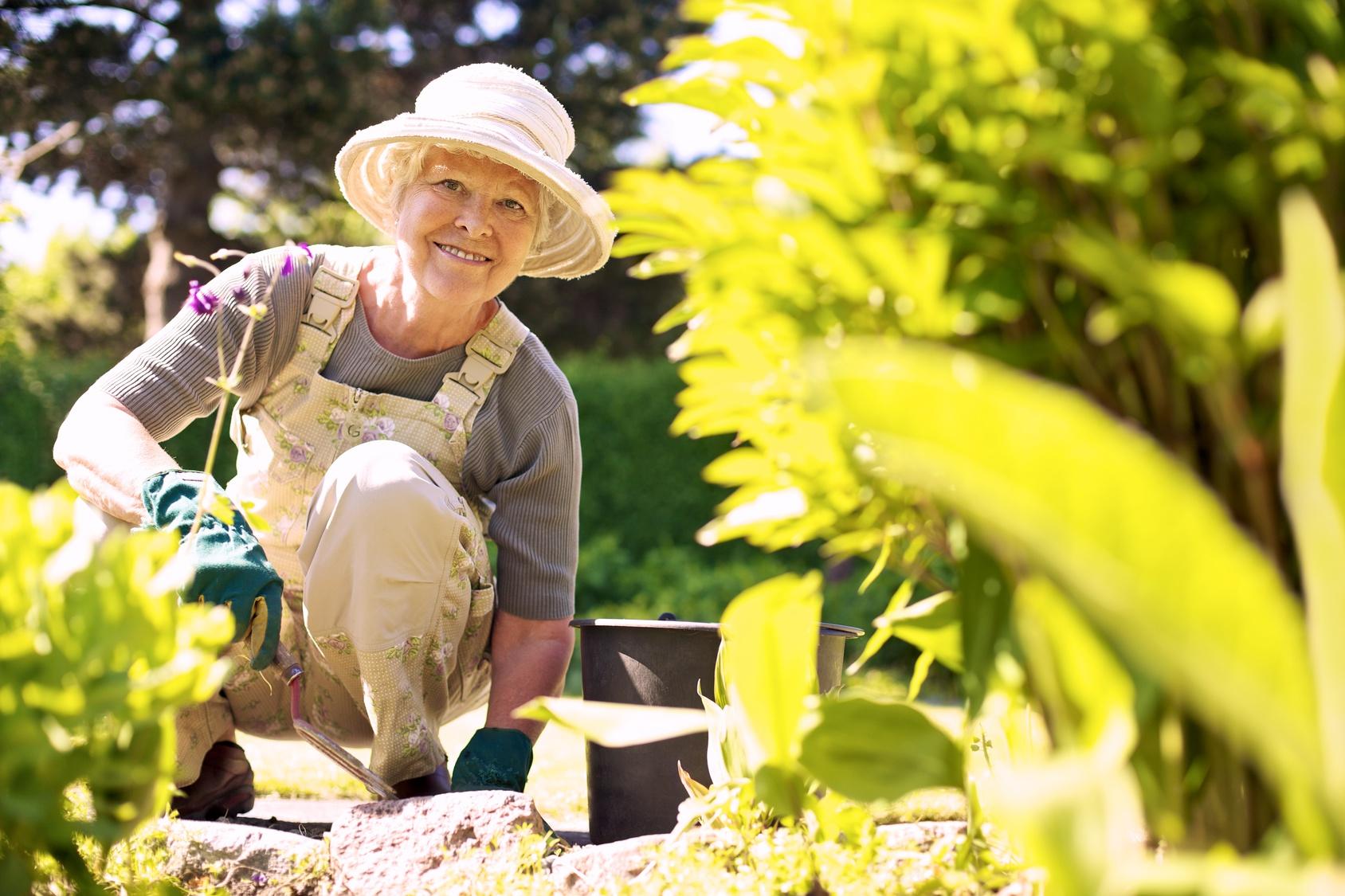Hilfe im Garten m