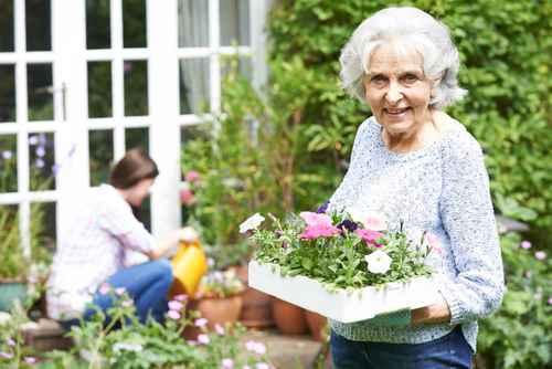 Großmutter-Gartenarbeit